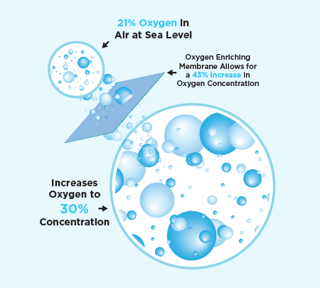 Oxygen Bar Increases Oxygen Concentration